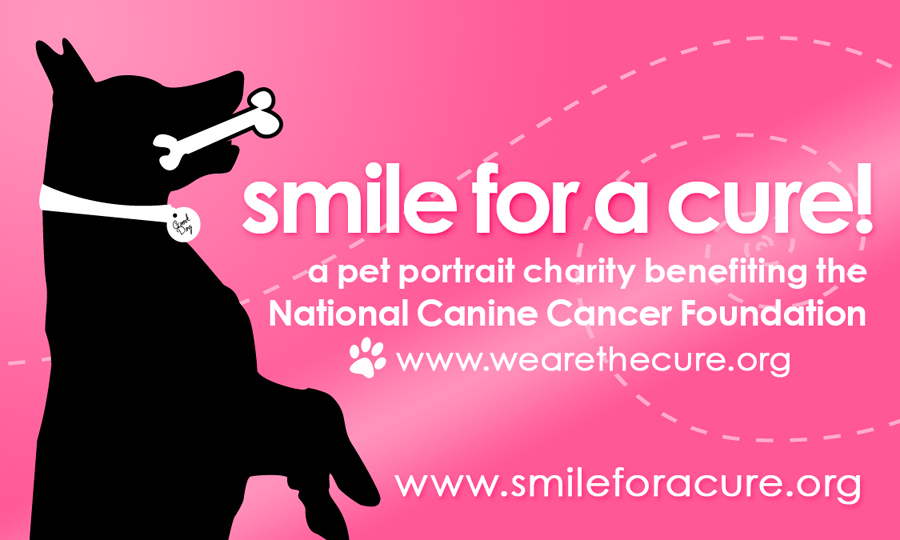 smileforacure_OfficialLogo_web